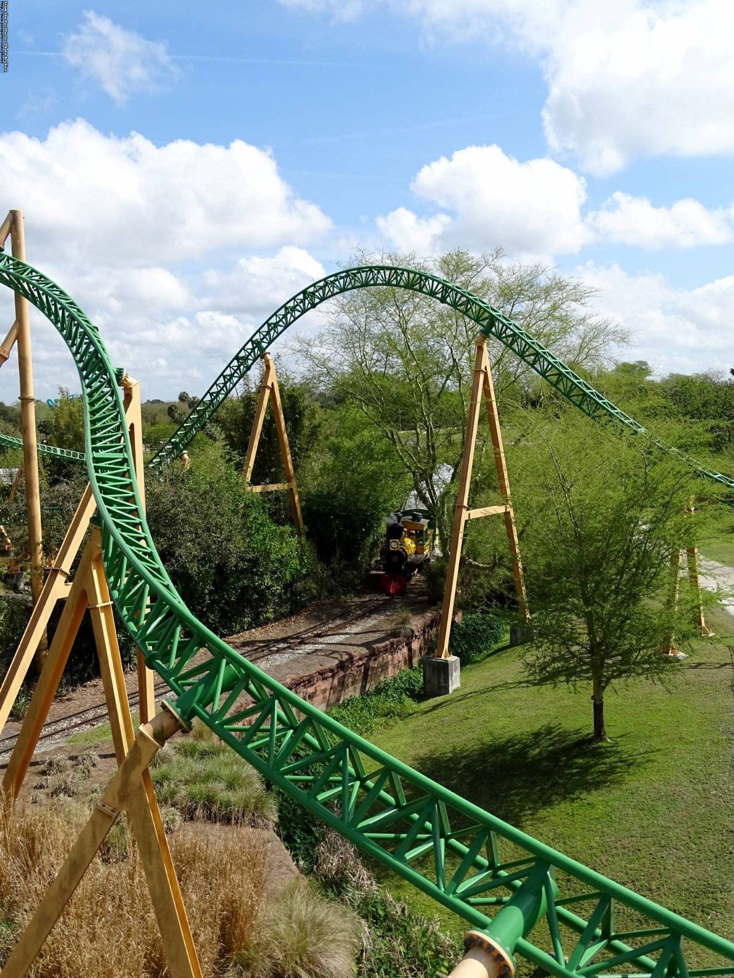 Take A Walk On The Wild Side At Busch Gardens Tampa Part