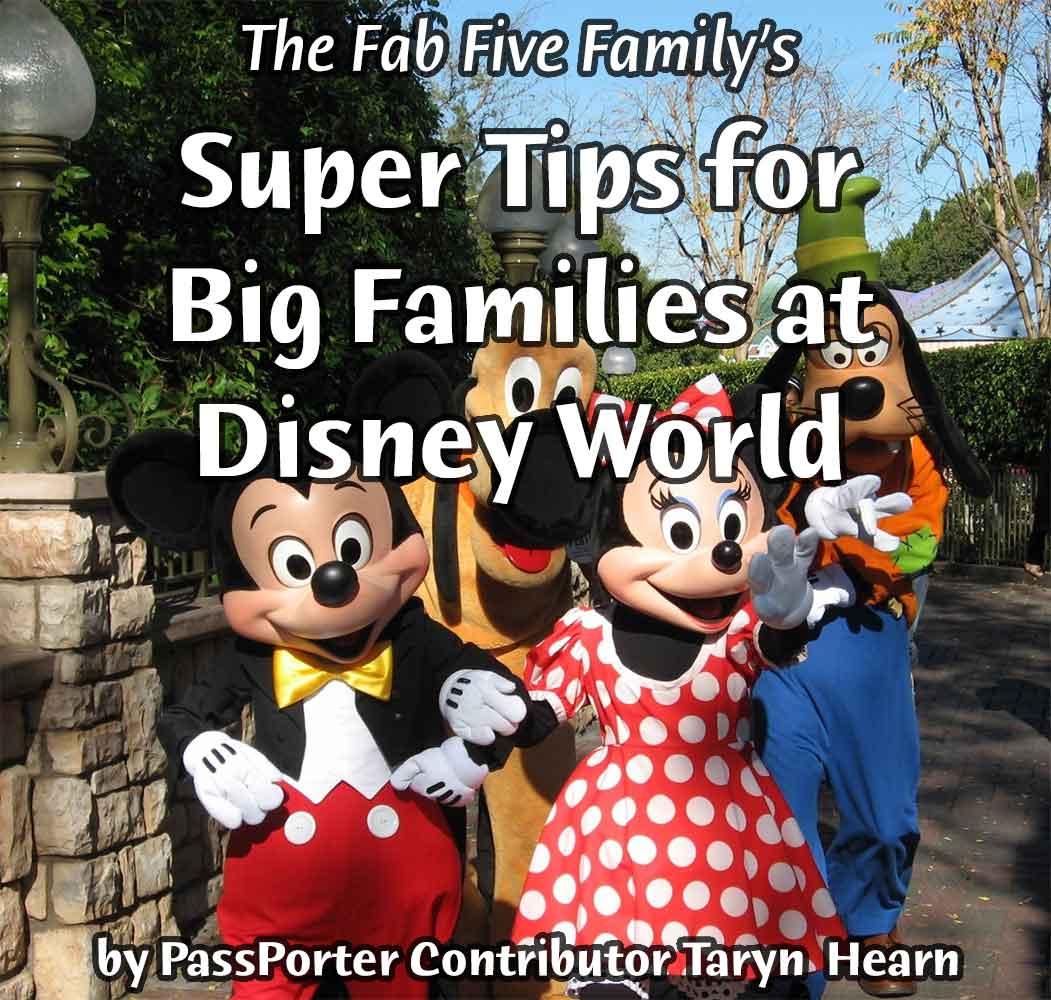 Walt Disney World photo