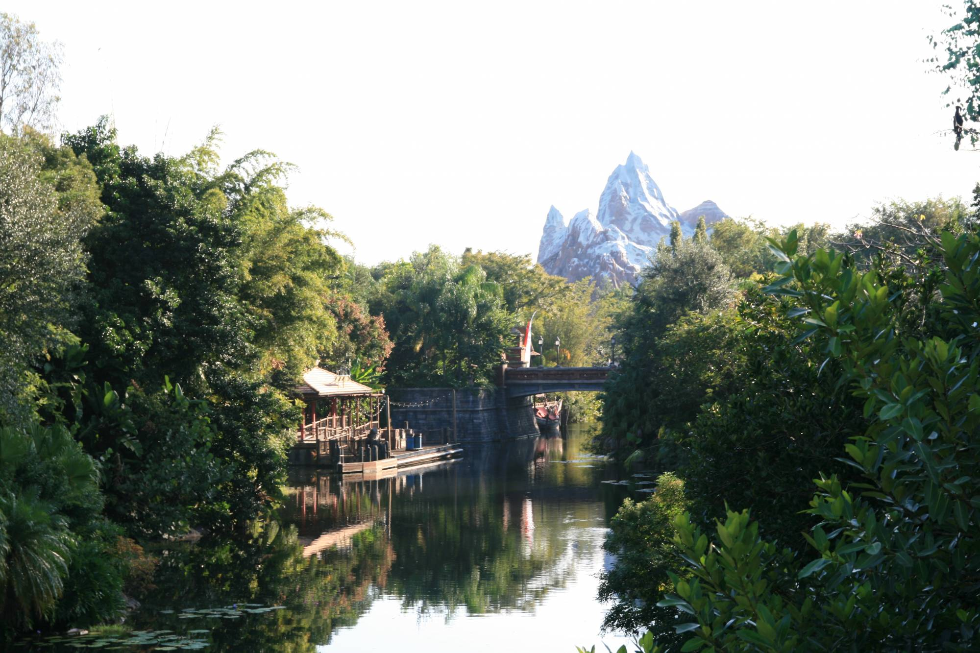 Looking out at Expedition Everest