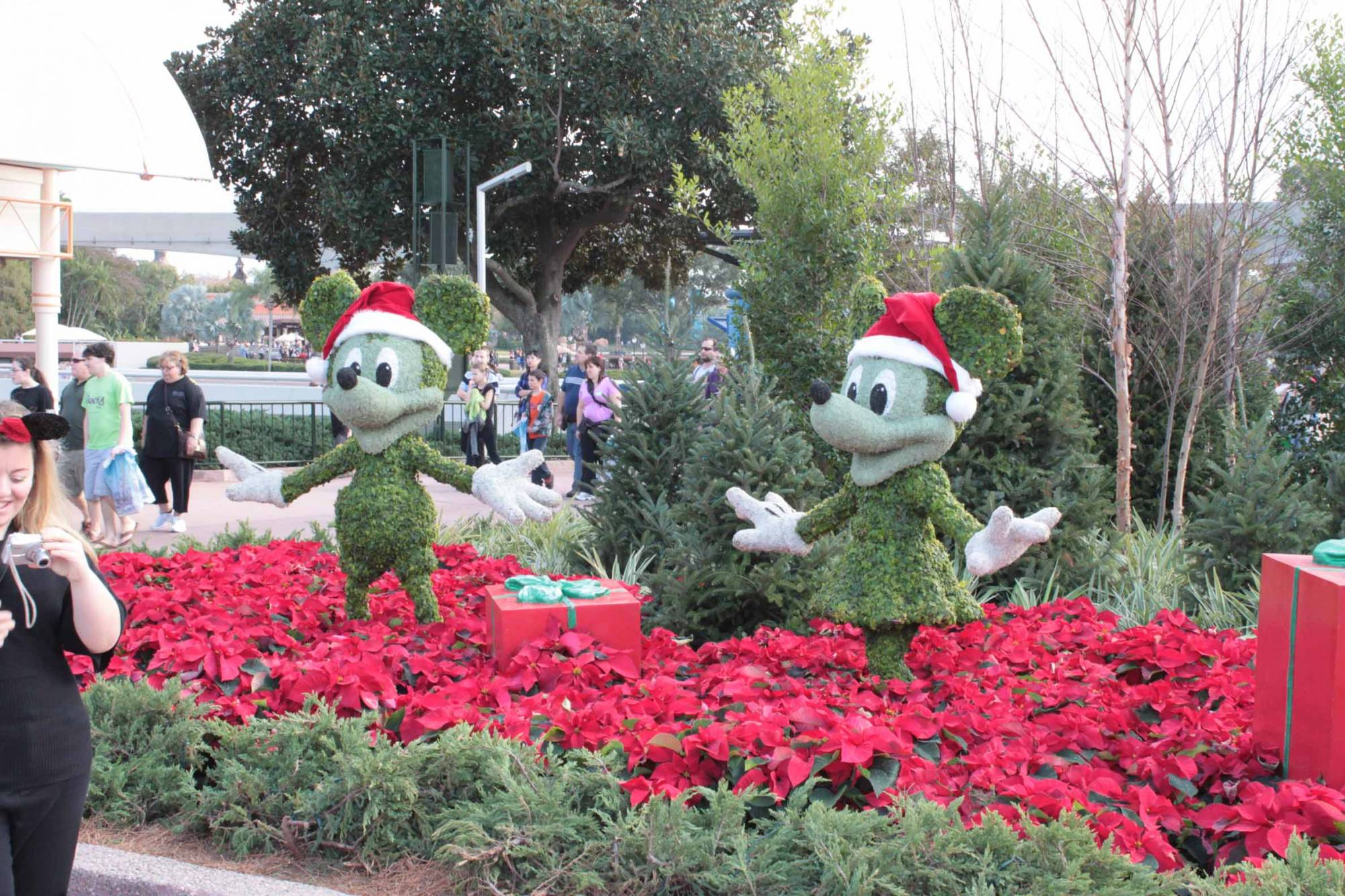 Mickey And Minnie Christmas Topiary