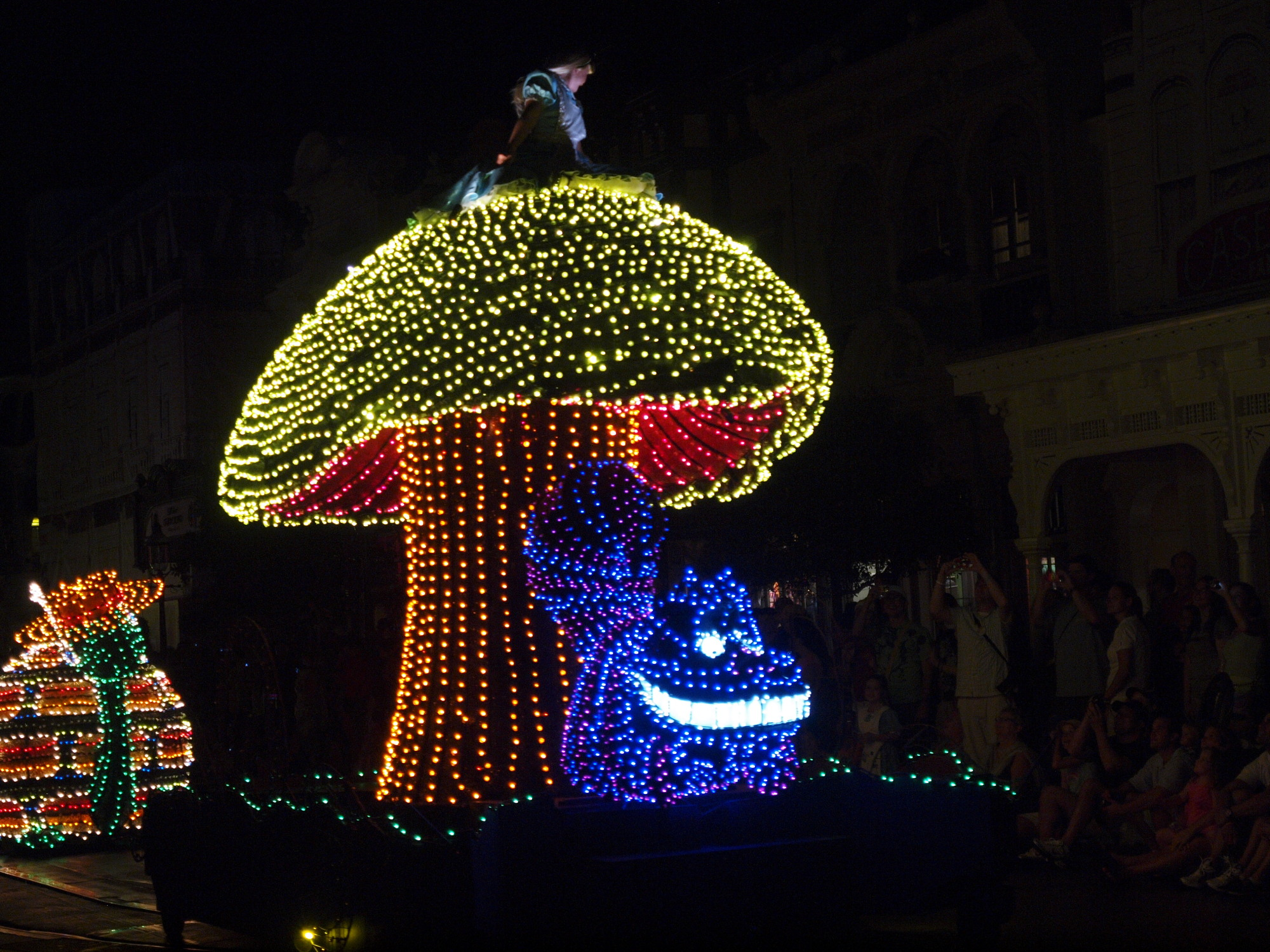 Magic Kingdom - Main Street Electrical Parade