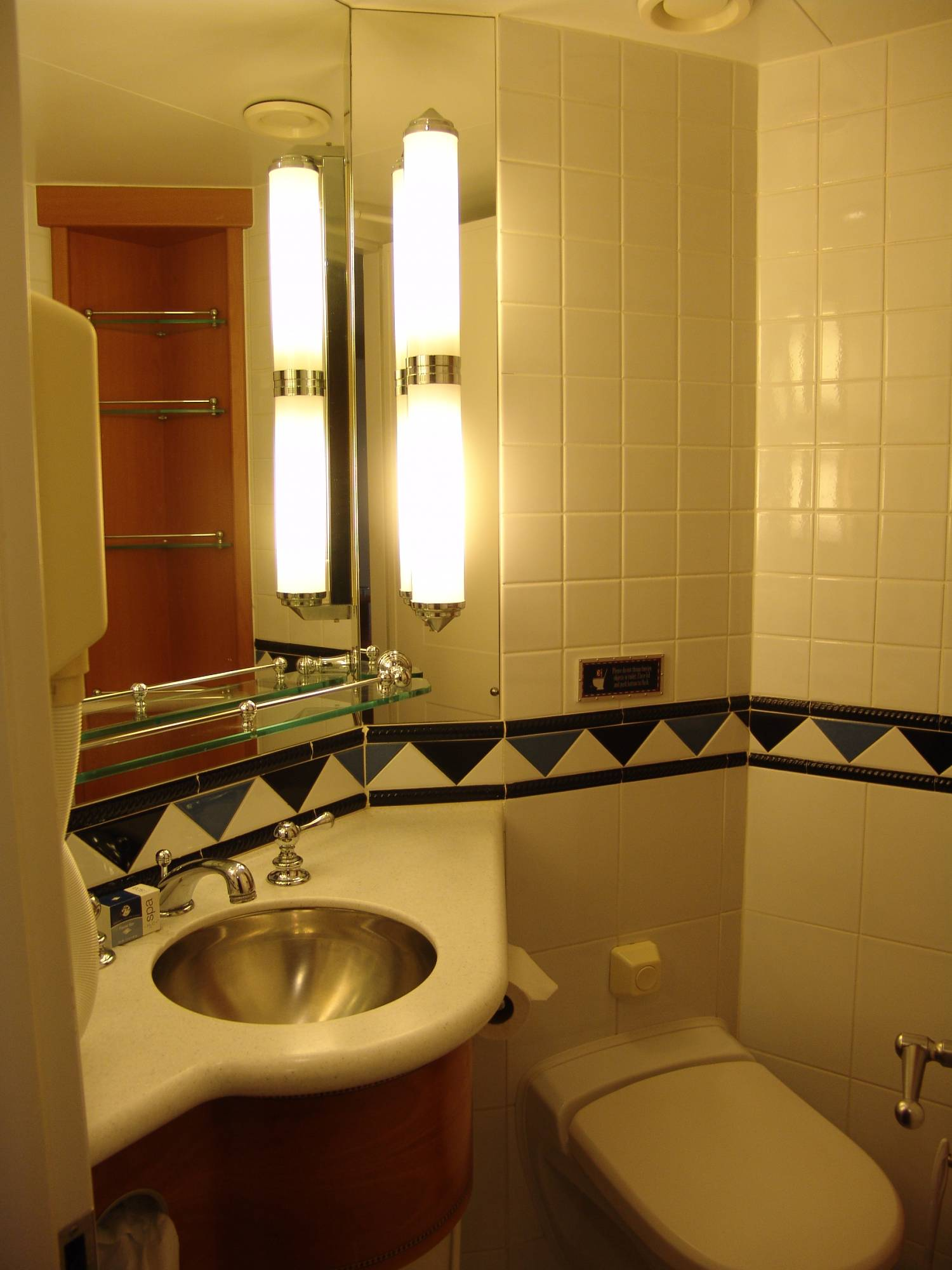 Disney Wonder Split Bathroom Passporter Photos