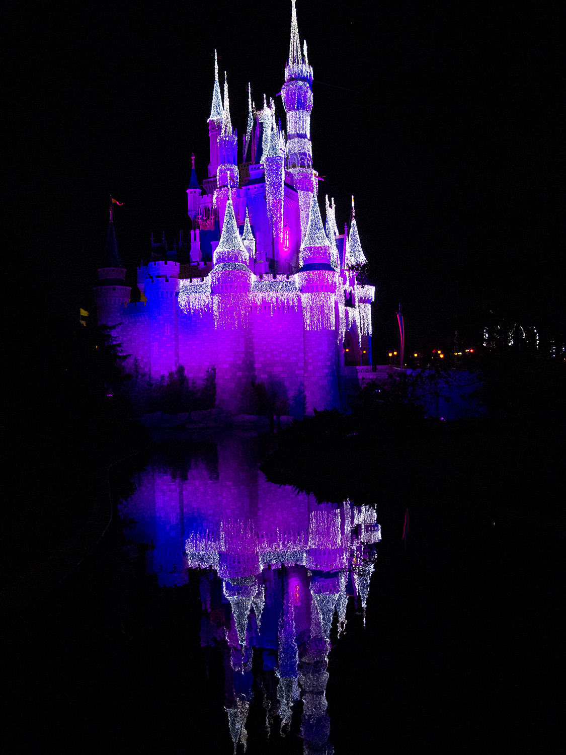 Magic Kingdom - Holidays