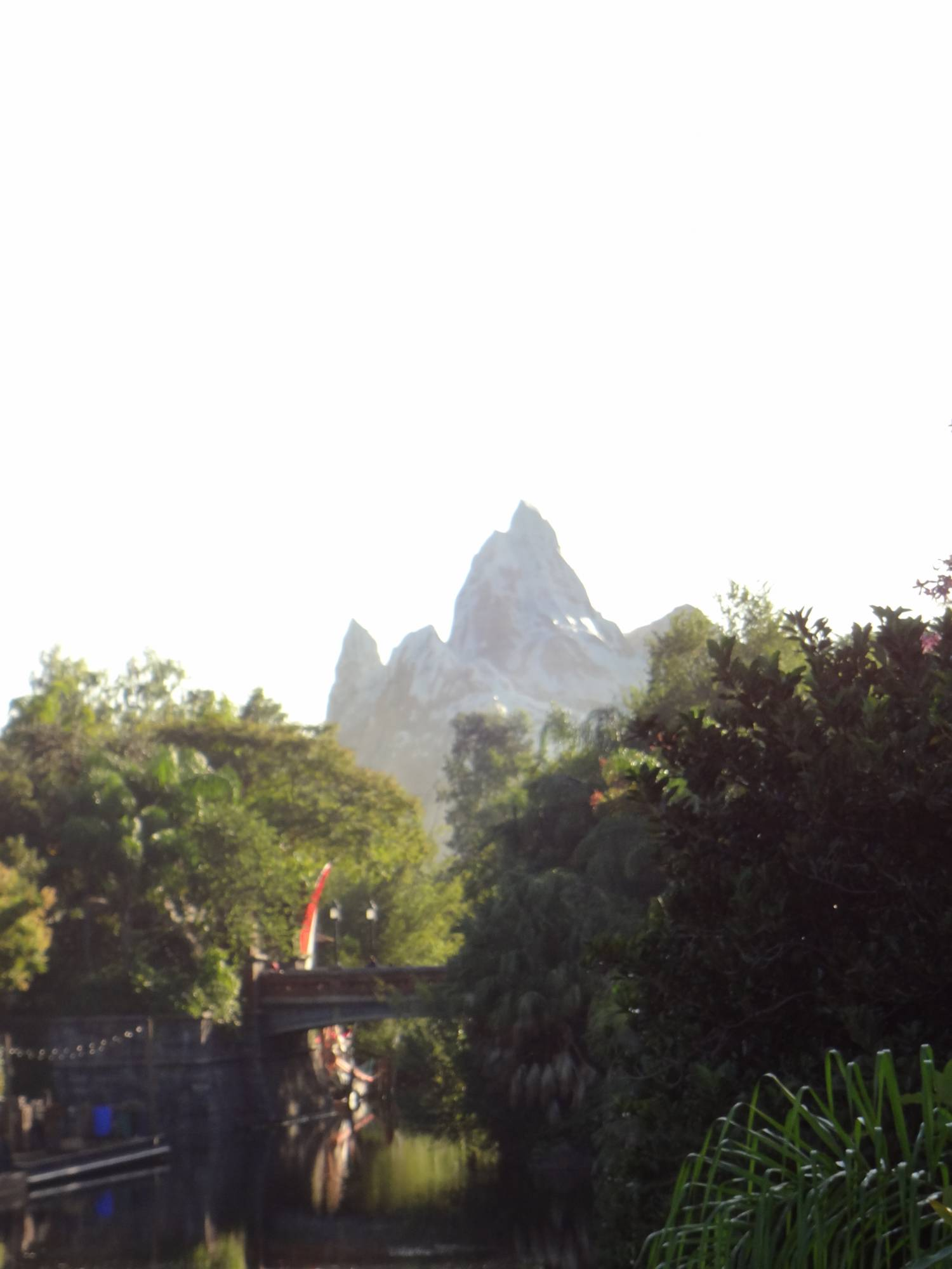 Disney's Animal Kingdom - Expedition Everest