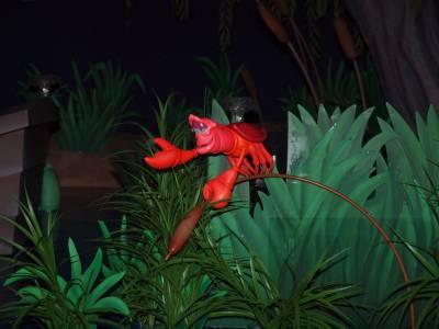 Magic Kingdom - Fantasyland - Under the Sea Journey of the Little Mermaid
