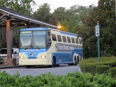 Saratoga Springs - Disney's Magical Express Bus